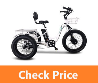 Caddy Electric Tricycle review