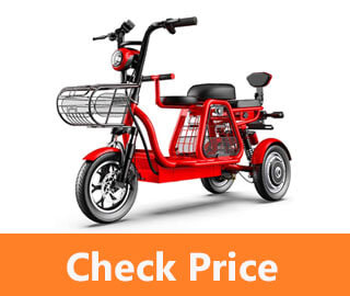 Best Electric Tricycle For Adults