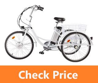 Viribus 3 Wheel Electric Bike